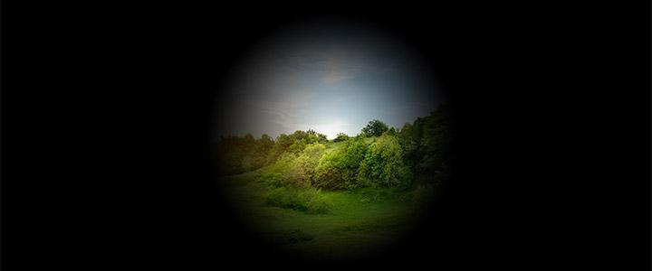 immagine visione con glaucoma